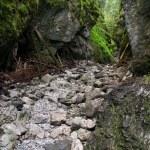 desfiladeiro de Cracóvia nas montanhas de tatra — Foto Stock