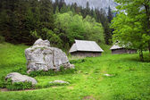Beautiful Valley in the Tatra Mountains — Stock Photo