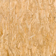 Flattened Wooden Shavings Texture — Stock Photo