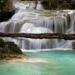 Jungle Waterfall — Stock Photo #2102188