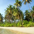 Island Tropical Shore — Stock Photo