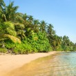 Tropical Island Landscape — Stock Photo