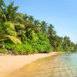 Tropical Island Landscape — Stock Photo #2103736