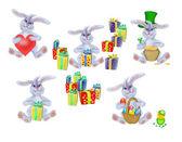 Collection du jeune lapin-lièvre — Photo