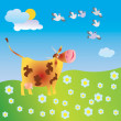 Cow on to the meadow — Stock Photo #2385603
