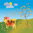 Cow in autumn — Stock Photo