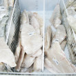 Frozen fish on counter — Stock Photo #2443164