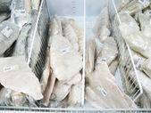 Frozen fish on a counter — Stock Photo