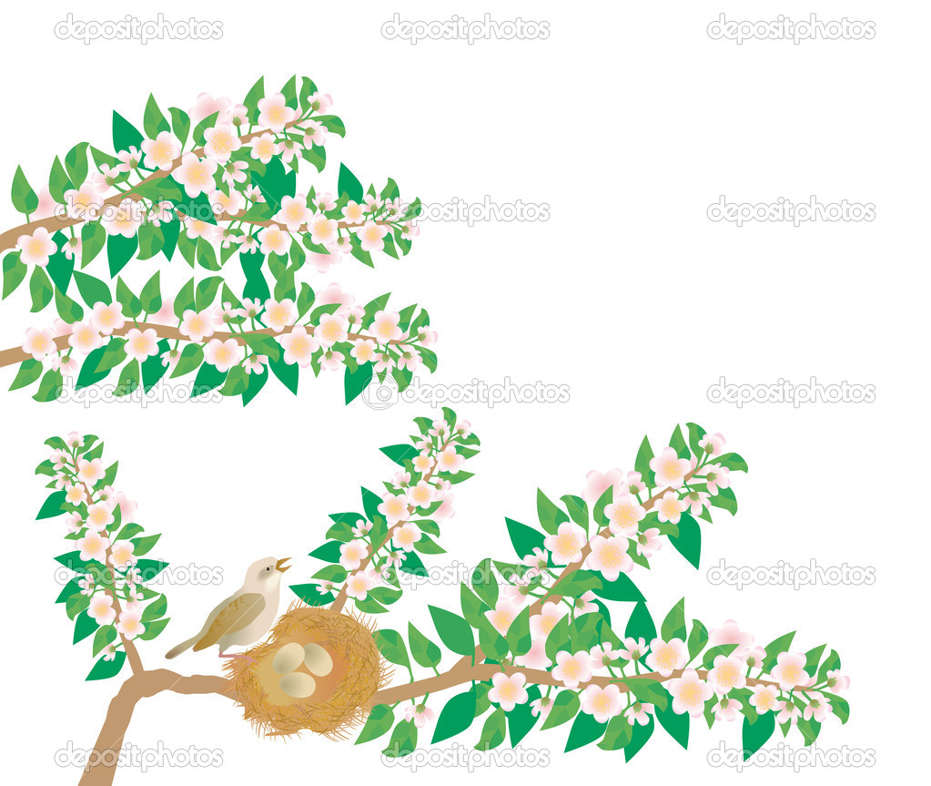 A nightingale sings a song sitting near nest — Stock Photo #2455811