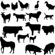 Farm animals — Stock Vector #2274420