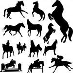 Horses — Stock Vector