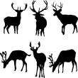 Royalty-Free Stock Vector Image: Deers