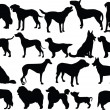 Dogs collection silhouette - Stock Vector