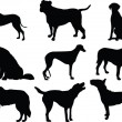 Dogs collection silhouette — Stock Vector #2164637