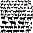 Vector de stock : Farm animals silhouette collection