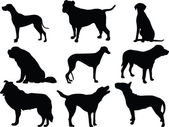 Dogs collection silhouette — Stock Vector