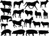 çiftlik hayvanı 2 — Stok Vektör