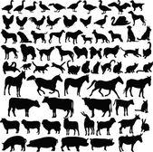 çiftlik hayvanları siluet koleksiyonu — Stok Vektör