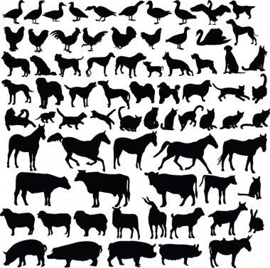 Farm animals silhouette collection