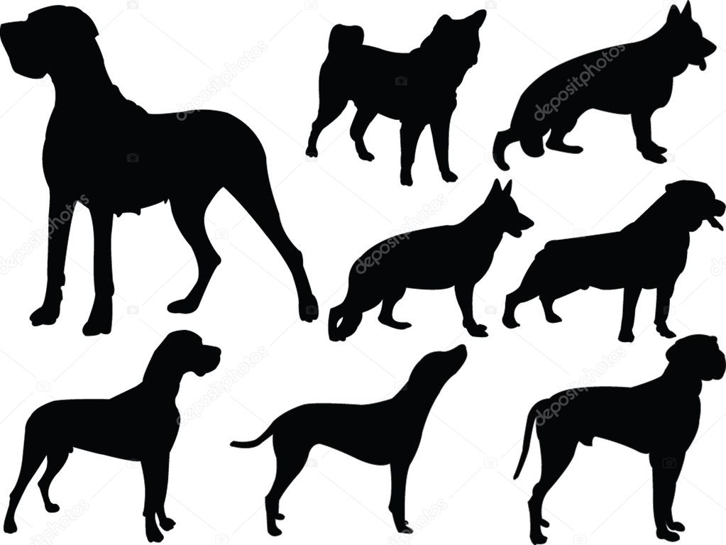 Dog silhouette collection 3 | Stock Vector © Violeta Stosic #2164629