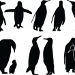 Stock Vector: Penguins silhouette collection