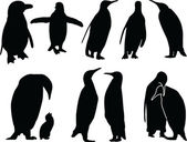 Penguins silhouette collection — Stock Vector