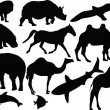 Royalty-Free Stock Vector Image: Animals collection