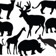 Wild animals collection — Stock Vector