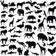 Stock Vector: Big collection of different animals