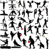 Big sport collection silhouette — Stock Vector
