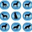 Dog collection in buttons — Stock Vector