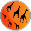 Giraffe in button — Stock Vector