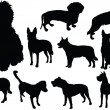 Royalty-Free Stock Vector Image: Dog collection 2
