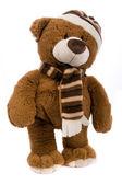 Teddy bear — Zdjęcie stockowe