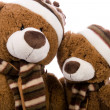 Teddy bear — Stock Photo #2212244