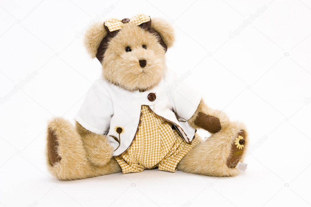 Teddy bear stodui shot — Stock Photo #2221761