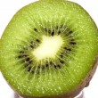 Kiwi isolated on white — Lizenzfreies Foto