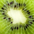 Kiwi isolated on white — 图库照片