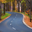 Country road in autumn — Stock Photo