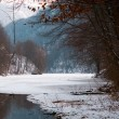 Stock Photo: Winter lake