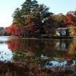 Relections of fall — Stock Photo
