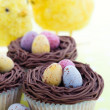 Easter cupcakes — Stock Photo #2050184