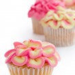 Mini flower cupcakes — Stock Photo