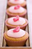 Row of pink cupcakes — Stock Photo