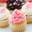 Cupcake assortment — Stock Photo