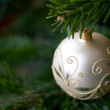 Christmas bauble — Stock Photo #2218840
