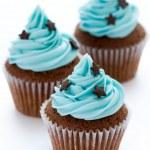 Chocolate cupcakes — Stock Photo