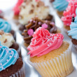 Stock Photo: Cupcake assortment