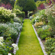 Garden path — Stock Photo #2265665