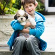 Stock Photo: Young boy holding a lhasa apso puppy